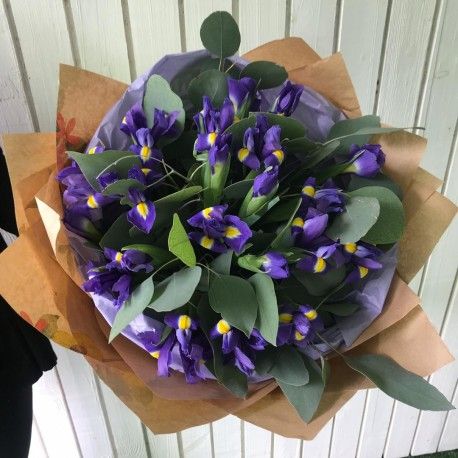 Bouquet of irises